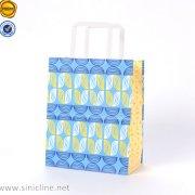 Sinicline paper Shopping Bag SB140