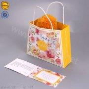 Sinicline paper Shopping Bag SB157