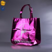 Foil laminated non woven shopping bag BBG-DB-04b